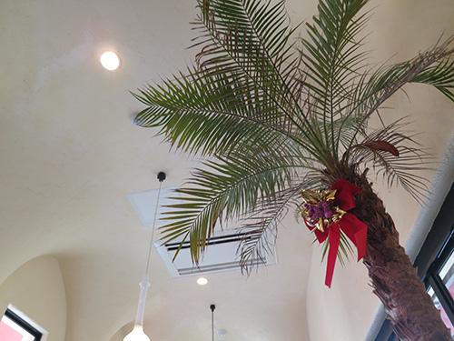 沖縄北谷のカフェ Little Janosz(リトルジャノス) 天井が高い