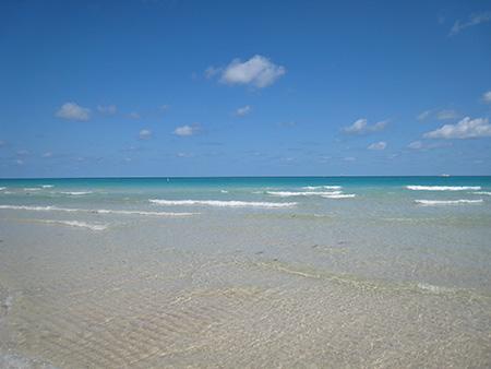 マイアミの海はきれい
