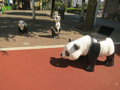 thinkpad X240sをパンダの背中に乗せてみる