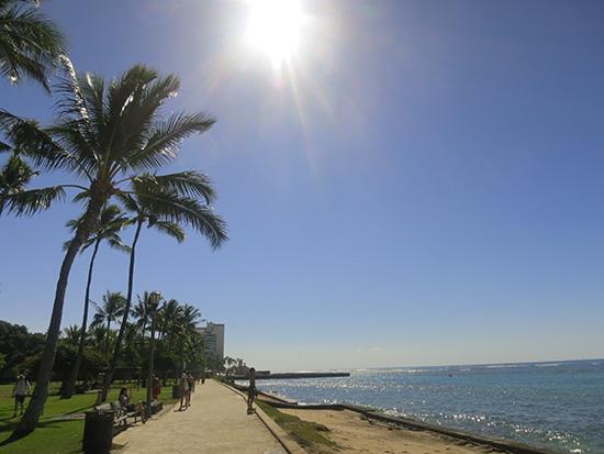 ハワイ旅行にも行ける