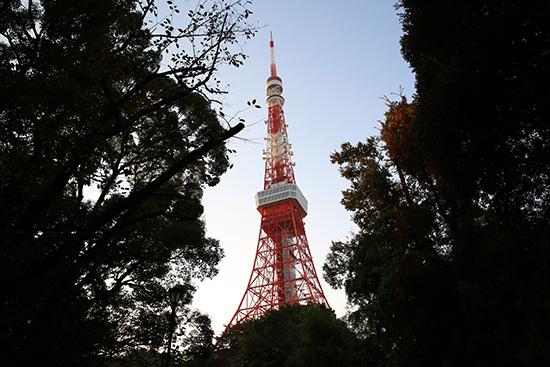 増上寺わき、道を歩いて行くと木の間から東京タワー